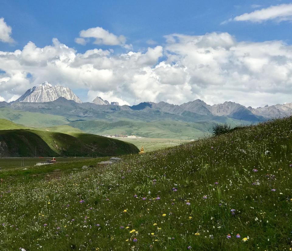 tibet_6981